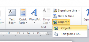 Microsoft Word objects option
