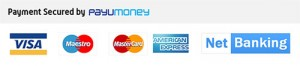 Payumoney payment modes