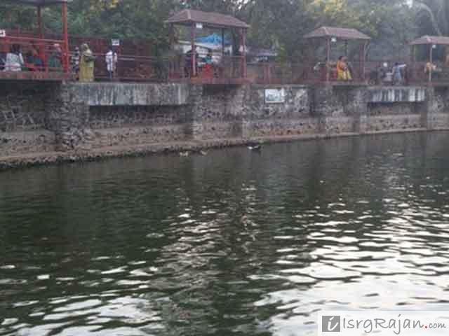 Dolphin Aquarium, Dolphin Aquarium in Mumbai
