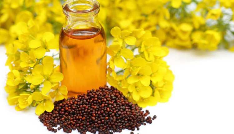 mustard, seed, oil