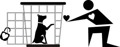 Dog in cage to be loved