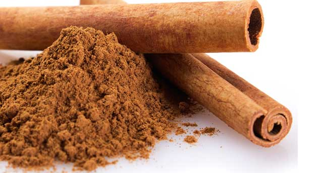 Cinnamon, Dalchini