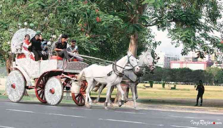 Horse driven cart kolkata
