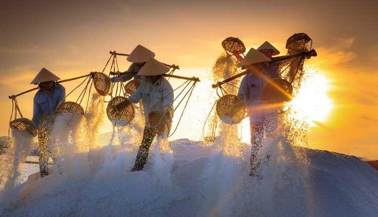 Vietnam, Salt Field, India, Relationship