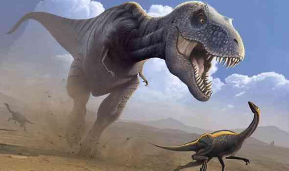 Dinosaurs got Killed
