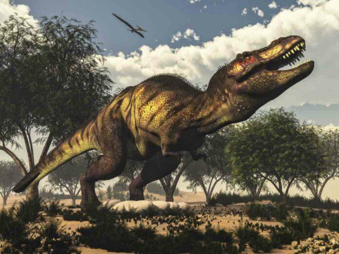 tyrannosaurus eggs