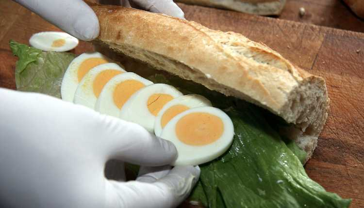 Food Processing, nano technology, egg sandwhich