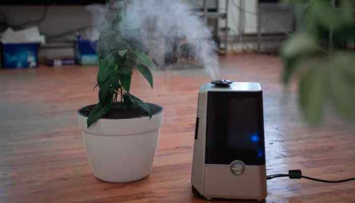 Air Purifiers In Delhi Homes