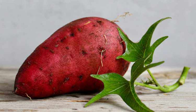 Sweet Potato, Fruit, Food, Vegetable