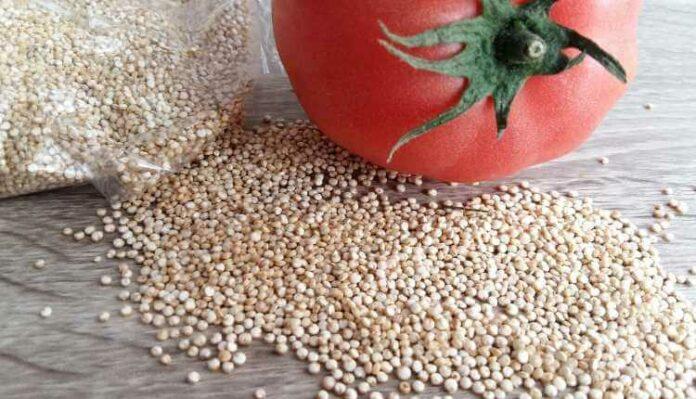 Quinoa, Food, Tomato, Vegan