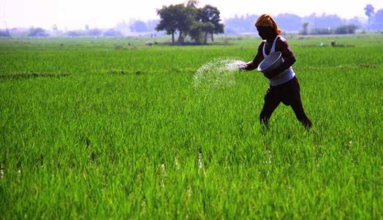 Farmer, agriculture, crops