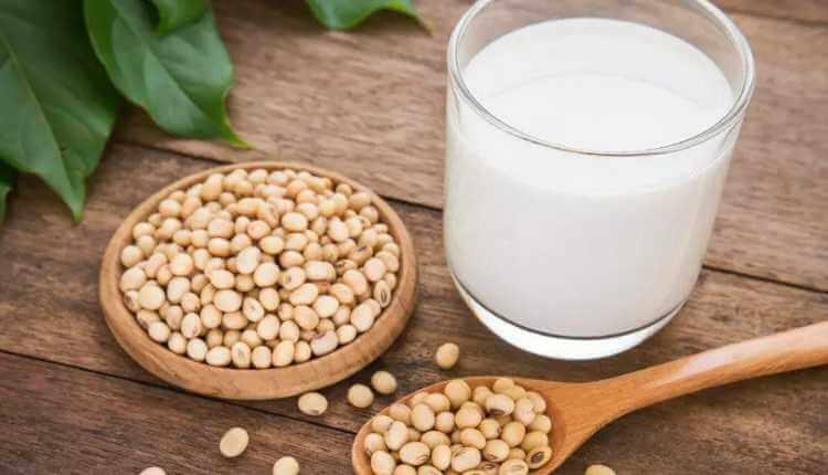 Soya Bean, Soybean, Milk, Vegan Milk