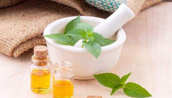 Aromatherapy, Lemon, Basil, Hairy, Essential Oil