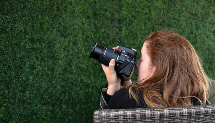 Photography, Camera, Girl, Model, Photoshoot, Wall, Green