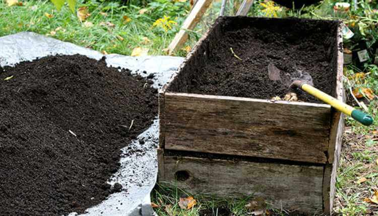 Soil Mixture