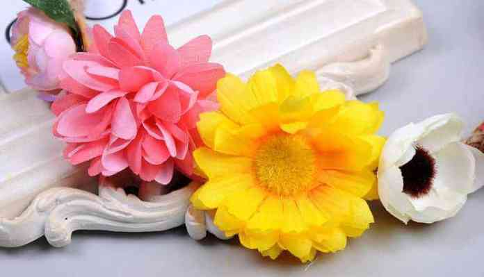 Top 10 Edible Flowers Used In Cooking That Are Health Boosters
