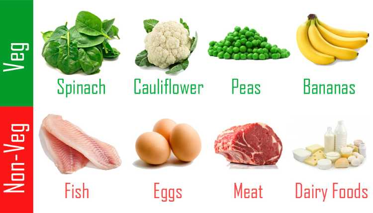 Some of the Protein-rich foods