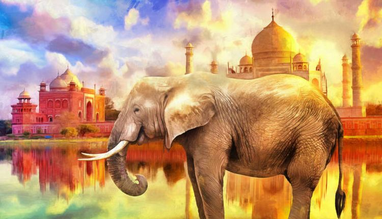 1000 Elephants, Taj Mahal
