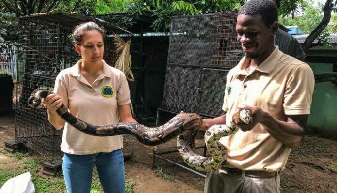 Snake Education