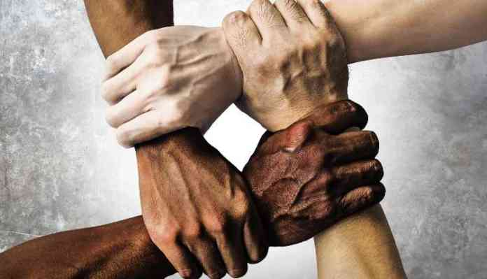 Hands, Human Rights, Hands, Group, Society, People