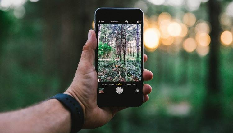 Clicking Photo, Iphone, Phone, Holding, Right Way, Forest