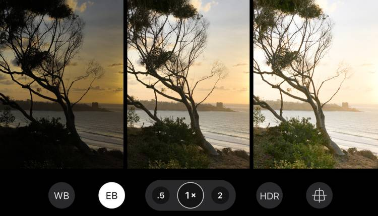Professional Mode, Phone Camera Setting, Basic Rule