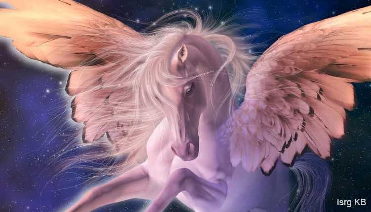 Unicorn Courage And Strength