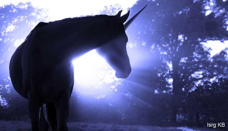 Unicorn, Individuality, Uniqueness