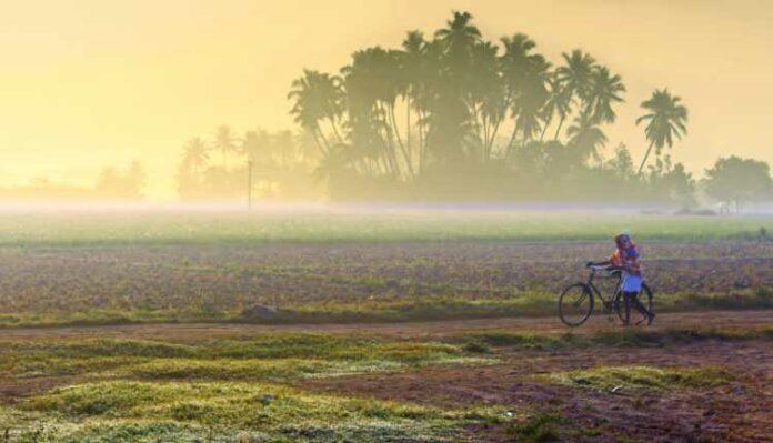 Village, Rural India, Cycle, Road, Farm