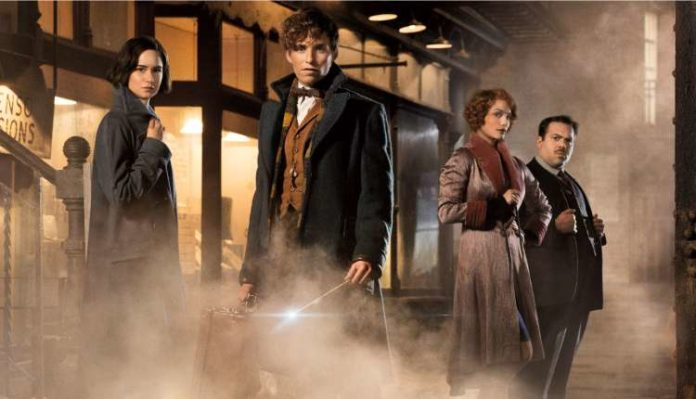 Extending To Fantastic Beasts Scene, Book, Movies, Series, Web Series