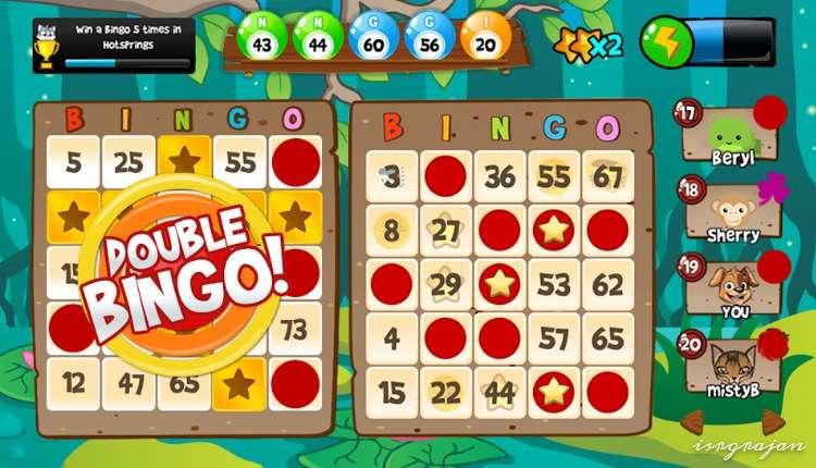 Bingo Abradoodle