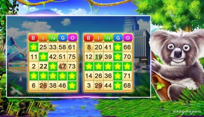 Top Rated Bingo Games For Android